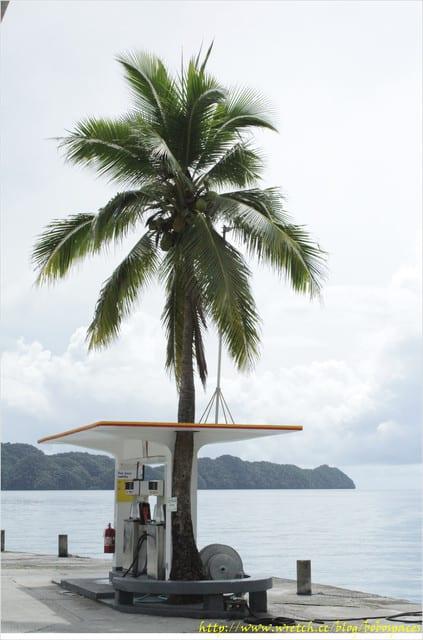 [旅遊-Palau]帛琉行Day4 ☆踏踏水+北島大瀑布探險之旅☆
