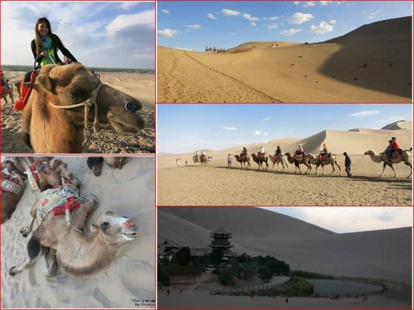 【中國西北-絲路】Day 4-2 敦煌。沙漠初體驗!彷彿置身古代的鳴沙山&月牙泉。