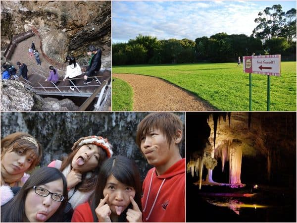 【澳洲】西南澳。DAY3-2 一天玩不夠!Margret river(瑪格莉特河)→Lake Cave 鐘乳石洞&餅乾工廠