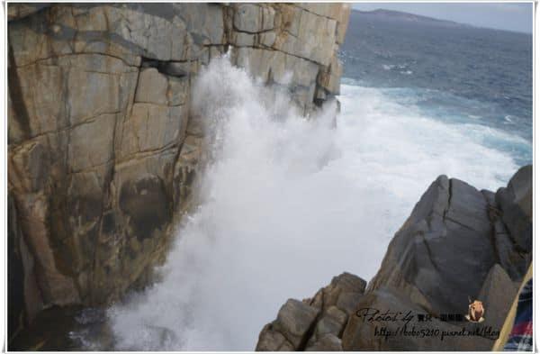 【澳洲】西南澳。Day6-1 如詩如畫Albany,驚濤駭浪的Gap海溝~