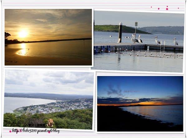 【澳洲】西南澳。Day7-2 Albany上山下海都不能錯過!數不清的絕美海灘大集合!