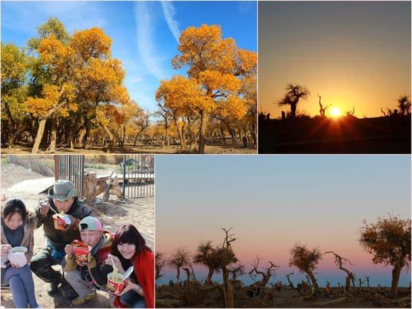 【中國-內蒙古阿拉善盟】額濟納旗自助旅行。交通 x 行程規劃 x 住宿 x 2014 門票資訊 x 注意事項 全攻略懶人包