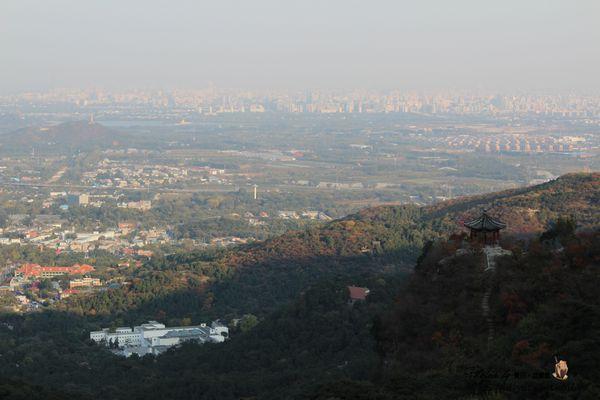 【2013中國北京】Day13-2 香山公園。沒有紅葉的紅葉季