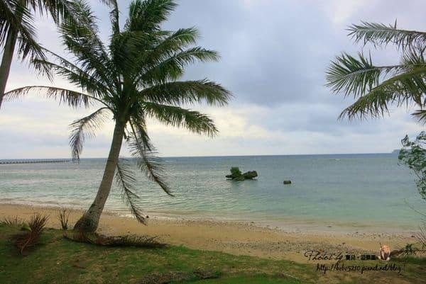 【2014 Guam】租車遊關島。一路向南(下)!太平洋戰爭國立歷史公園 &不期而遇的雞蛋花