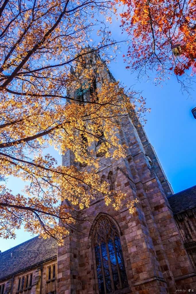 【美國康州|耶魯大學】原來大學可以這麼美!漫步耶魯校園,浸潤在秋色裡浪漫名校。