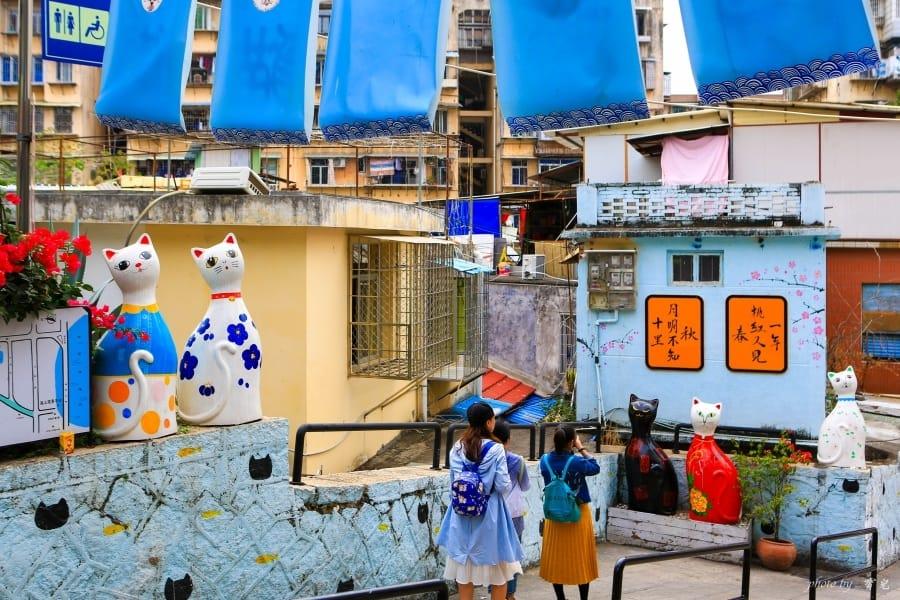【廈門景點|頂澳仔貓街】貓奴淪陷!超好拍彩繪牆,廈門新興貓咪主題街道。