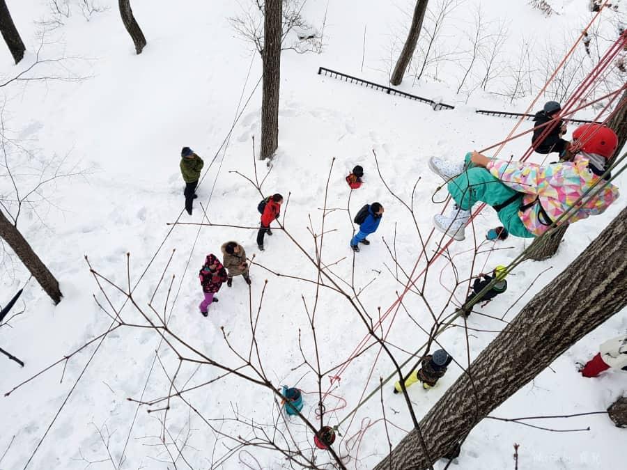 【北海道旭川|雪上活動】東川町攀樹Treeing超有趣!雪地中爬樹的新奇體驗。